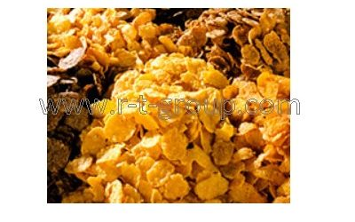https://r-t-group.com/ovens-extruders/corn-flakes