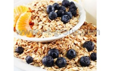 https://r-t-group.com/ovens-extruders/instant-porridge